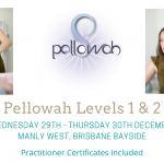 Pellowah Level 1 & 2 Training